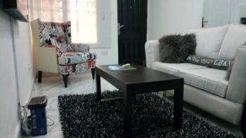 Luxury Finished and Tastefully Furnished One Bedroom Apartment on The First Floor, Off Chevron Drive,, Lekki, Lagos, Mini Flat Short Let