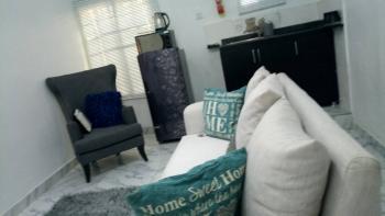Beautifully Furnished, Newly Finished 1 Bedroom Apartment, Off Chevron Drive, Lekki, Lagos, Mini Flat Short Let