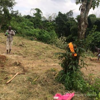 15 Plots of Land, Along Aroma Junction, Awka, Anambra, Land for Sale