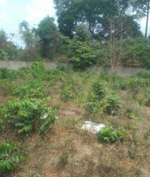 20 Plots of Land, Along Timber Market, Awka, Anambra, Mixed-use Land for Sale