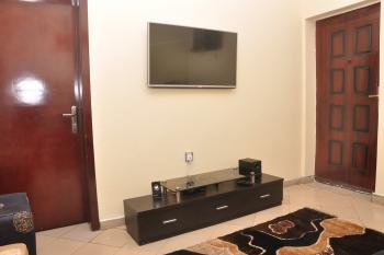 Furnished and Affordable 1 Bedroom Apartment (c) - Available Monthly, 65, Akanni Ajiran, Agungi, Lekki, Lagos, Mini Flat Short Let
