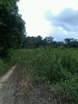 Acres of Farm Land, Epe, Lagos, Mixed-use Land for Sale