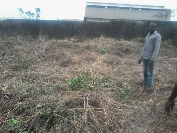 a Full Plot of Land - 120/60 Standard, Behind Filling Station, Ibeju, Lagos, Mixed-use Land for Sale