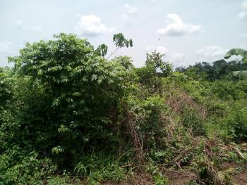 Eight Plots, Abegishi, Ifo, Ogun, Land for Sale