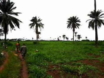 100 Acres of Land, Obafemi Owode, Ogun, Mixed-use Land for Sale