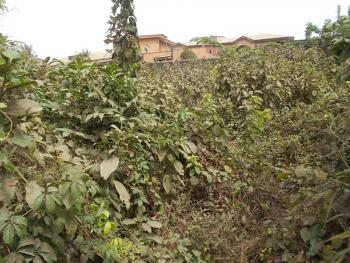 a Prime Fenced Land on 1,343 Square Meters, Maple Wood Estate, Agege, Lagos, Land for Sale