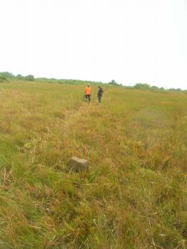 Flat and Dry Lands, Quantumlife Avenue, Badagry, Lagos, Mixed-use Land for Sale