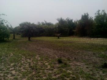 Farmland, Nekede, Owerri, Imo, Mixed-use Land for Sale