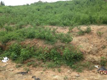 3.7 Hectares of Mixed Use Dry Land, Karsana, Abuja, Mixed-use Land for Sale