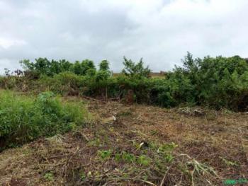 Land, Ogbondoko, Along Afor Road, Ilorin East, Kwara, Mixed-use Land for Sale