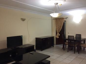 Lovely 2 Bedroom Furnished and Serviced Flat, Wuse 2, Abuja, Flat for Rent