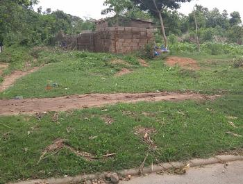 7482.59 Sqm Commercial Dry Plot of Land, Behind Apo Legislative Quarters, Zone E, Apo, Abuja, Commercial Land for Sale
