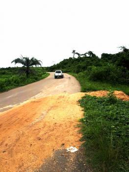 Perfect Land for Farming, Estate, Schools, Etc, Ode Lemo, Sagamu, Ogun, Commercial Land for Sale