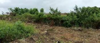 Land, Igando, Ikotun, Lagos, Residential Land for Sale