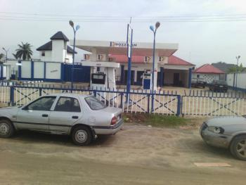 Functional and Well Located Filling Station with 6 Pumps, Igwuruta Road, Port Harcourt, Rivers, Filling Station for Rent