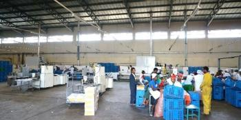 Biscuit Factory, Agbara, Ogun, Factory for Sale