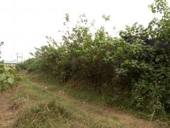 1000sqm of Land at Crown Estate, Lekki Peninsula, Crown Estate, Ajah, Lagos, Commercial Land for Sale