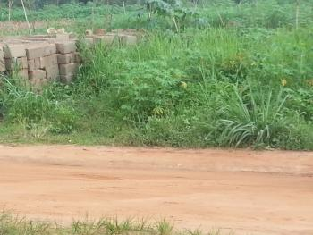 Plots of Land, Opposite The Anambra State Polytechnic Permanent Site, Awka, Anambra, Land for Sale