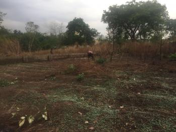 Land 5191sqm, Central Business Districts Area, Behind Bolingo Hotel, Wuse, Abuja, Mixed-use Land for Sale