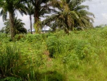 Plots of Land, Off International Airport Road, Ikwerre, Rivers, Mixed-use Land for Sale