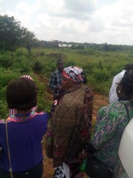 Oxford Real Estate Lands, Ewekoro, Ewekoro, Ogun, Mixed-use Land for Sale