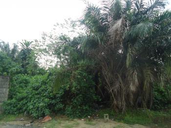 Land Measuring 2400sqm, Ikota Villa Estate, Lekki, Lagos, Mixed-use Land for Sale