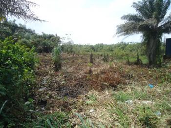 Plot of Land Facing Major Road, Ogumbo Road, Abraham Adesanya Estate, Ajah, Lagos, Mixed-use Land for Sale