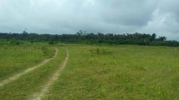 Plots of Land, Ezema Nike, Behind Nike Lake Hotel, Abakpa Nike, Enugu, Enugu, Mixed-use Land for Sale