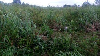 823 Acres of Land at Ajambata Village, Atan-ota, Ajambata Village, Sokoto Road, Ado-odo/ota, Ogun, Mixed-use Land for Sale