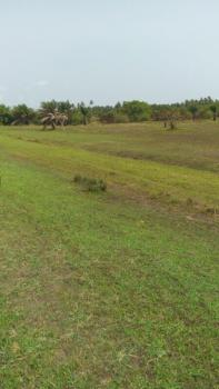 4,373.23sqm Land, Lawrence Street, By Glover Round About, Ikoyi, Lagos, Residential Land Joint Venture