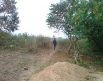 Six Acres of Land, Imota, Lagos, Residential Land for Sale
