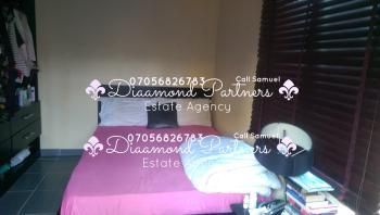 Luxury Serviced 24hrs Light Mini Flat One Bedroom Lekki Phase 1, Lekki Phase 1, Lekki, Lagos, Flat for Rent