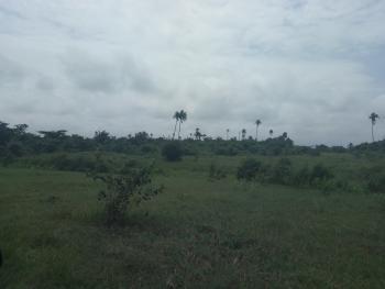 42 Plots of Land, Lekki Free Trade Zone, Alasia, Ibeju Lekki, Lagos, Mixed-use Land for Sale
