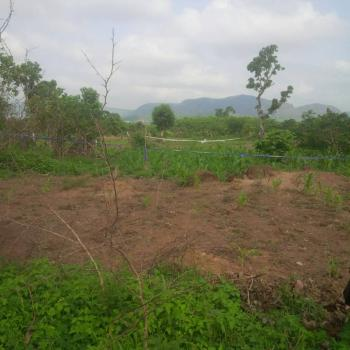 Well Located 2517sqm of Land, Behind Cash & Carry Mall, Jahi, Abuja, Commercial Land for Sale