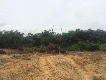 Acres of Dry Land, Facing Elerangbe Road, Ibeju Lekki, Lagos, Mixed-use Land for Sale