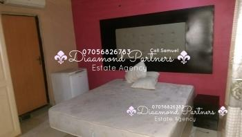 Furnished Self Contained Flat Serviced, Off Ahmadu Bello Way, Victoria Island Extension, Victoria Island (vi), Lagos, Self Contained (studio) Flat for Rent