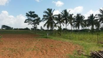 37 Acres of Land, Jesu Oyingbo Axis, Close to Shonibare Estate Gate, Maryland, Lagos, Mixed-use Land for Sale