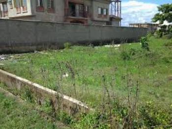 2 Plot of Land, Hosana Estate, Amuwo Odofin, Isolo, Lagos, Residential Land for Sale