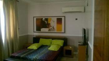 Nicely Located Shared Apartment, Off Spa Road, Ikate Elegushi, Lekki, Lagos, Self Contained (studio) Flat for Rent