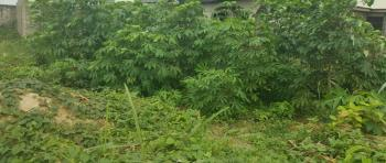 Land Measuring About 1150sqm  with C of O, Central Business District, Alausa, Ikeja, Lagos, Mixed-use Land for Sale
