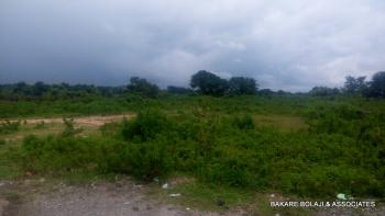 1500 Sqm Empty Commercial Plot, By Fct Main Campus, Federal College of Education, Gwagwalada, Abuja, Commercial Land for Sale