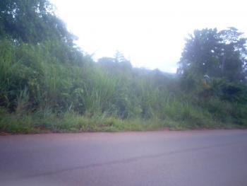 100 Plots of Land, Itulu-atuma Road, Before Isele-uku, Aniocha North, Delta, Commercial Land for Sale
