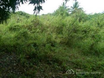 1 Acre, Lusada Igbesa, Agbara, Ogun, Mixed-use Land for Sale