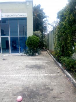 a Detached House with Bq on 1200 Sqm Land, Adeola Odeku, Victoria Island (vi), Lagos, Detached Duplex for Sale