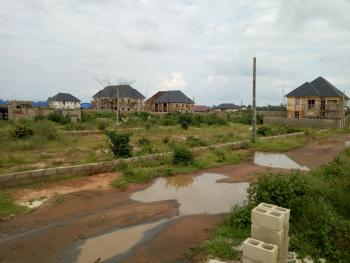 Irresistible 2 Plots of Land, Federal Site and Service Naze, Off Poly Junction, Aba Road, Owerri, Imo, Residential Land for Sale