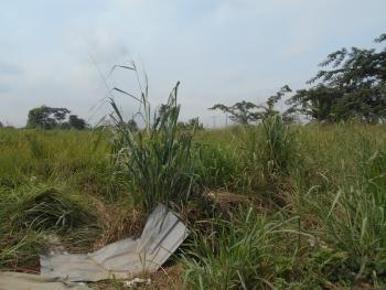 a Prime Fenced Industrial Land on 15 Acres, Asese, Along Lagos Ibadan Expressway, Berger, Arepo, Ogun, Industrial Land for Sale