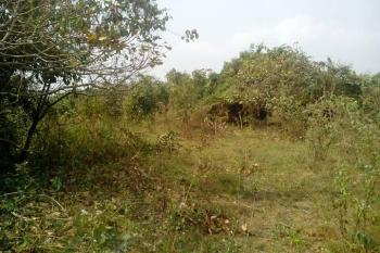 Acres of Land, Owode Ede, Ede North, Osun, Mixed-use Land for Sale