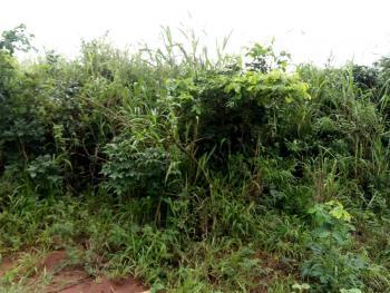 100 Plots of Land, Asaba, Delta, Commercial Land for Sale