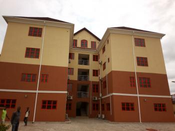 4 Luxury 3 Bedroom Flats, 2 Luxury 2 Bedroom Flats, 2 Bedroom Pent House Serviced with Bqs, Gym, Swimming Pool, Lawn Tennis Court., Suitable for Use As a Hotel, School, Hospital, Residential Staff Quarters, Embassy Quarters, Etc., Asokoro District, Abuja, Flat for Rent
