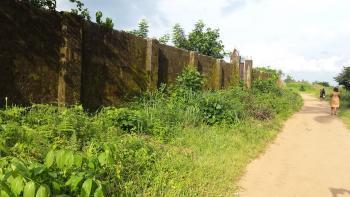 2 Plots Land, Umuagwo, Ohaji/egbema, Imo, Mixed-use Land for Sale